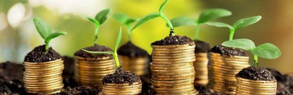 Привлечение инвестиций в бизнес Cover Image