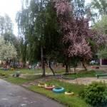МБДОУ - детский сад комбинированного вида № 397 Profile Picture
