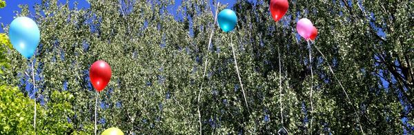 """МАДОУ """"Детский сад № 5"""" город Гусев Калининградской обл Cover Image"""