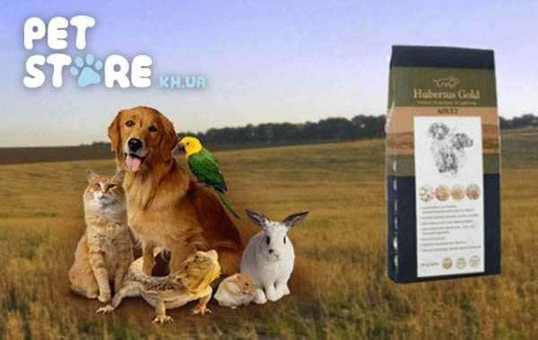 Особенности выбора корма для домашних животных